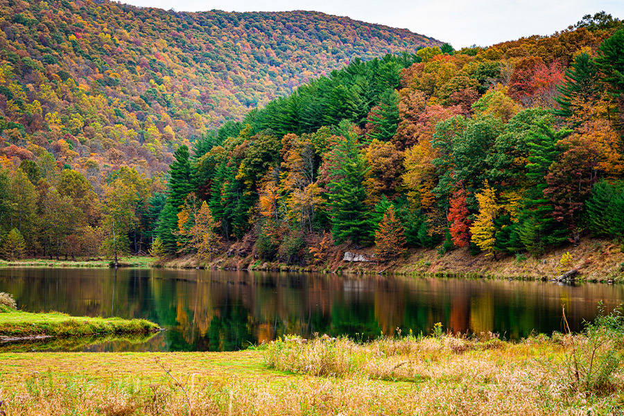Pennsylvania - Beautiful Fall Foliage in the Mountains of Pennsylvania